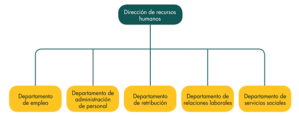 How to organise a human resources department